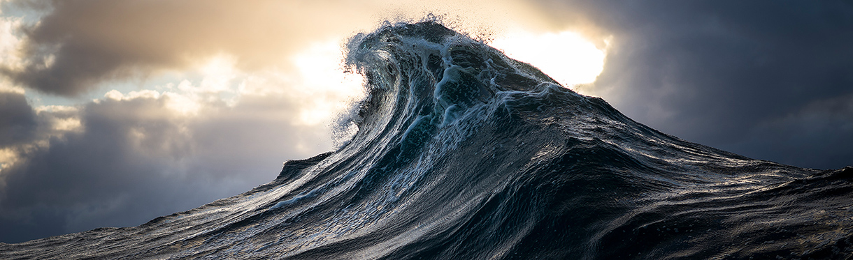 Ray Collins - Pictures, Art, Photography