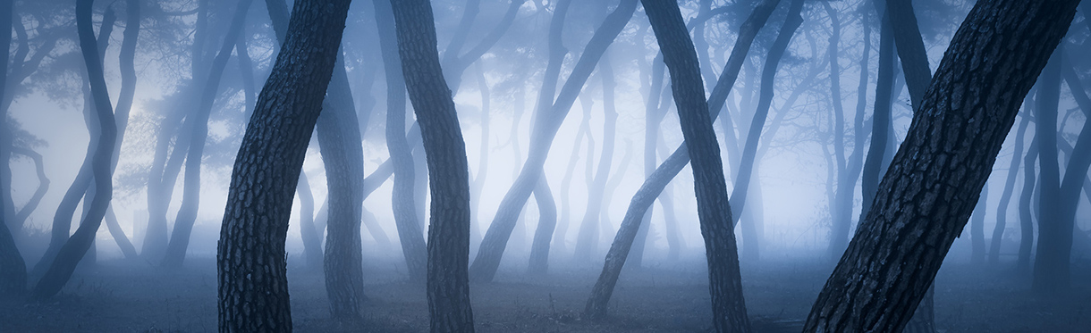 Nathaniel Merz - Pictures, Art, Photography