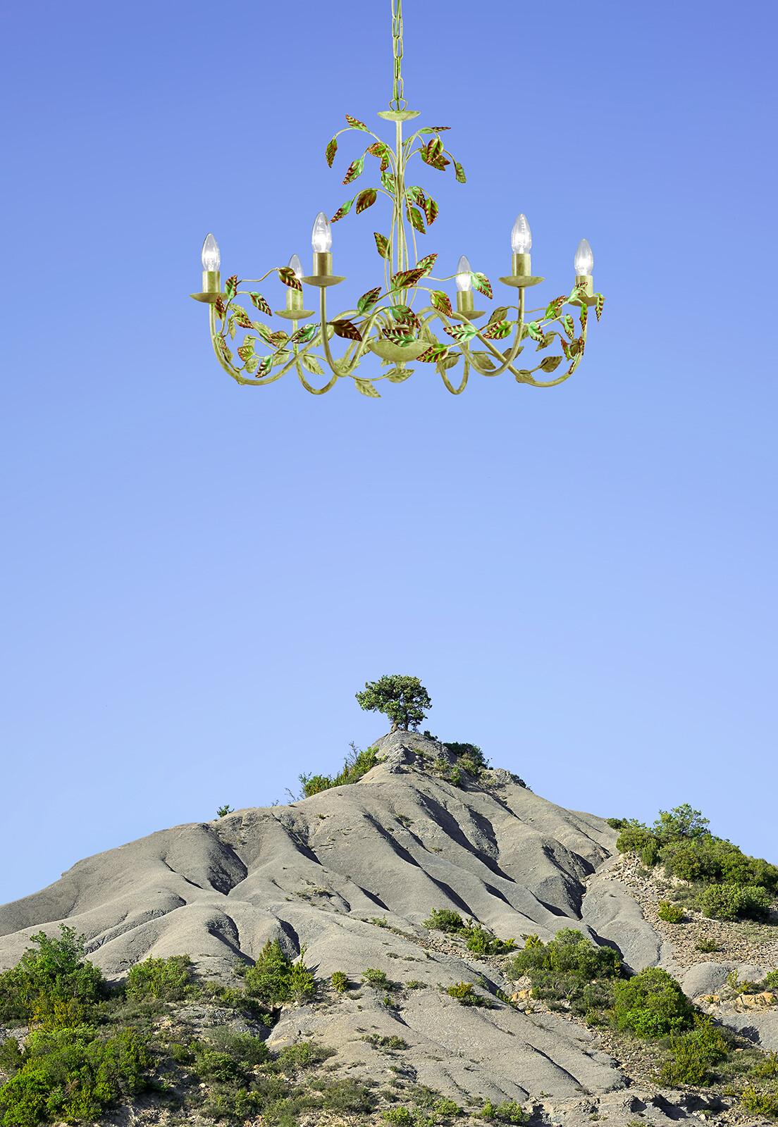 The Tree, Pyrenees  - Ciuco Gutiérrez