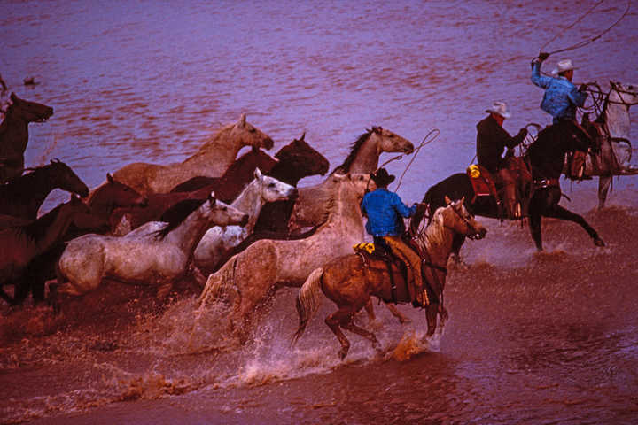 Wildes Wasser, Texas von Dieter Blum
