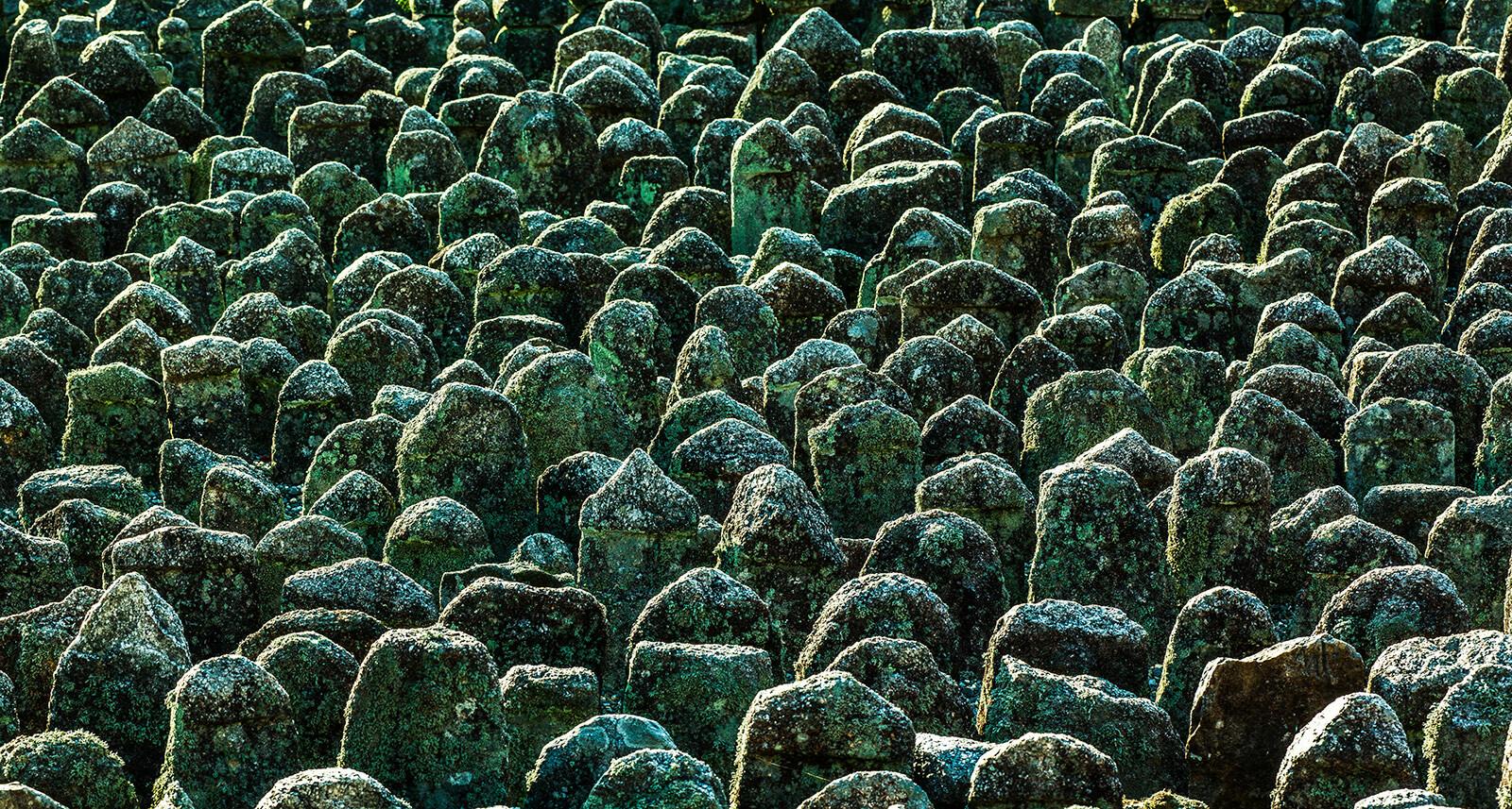1000 Buddhas - Farin Urlaub