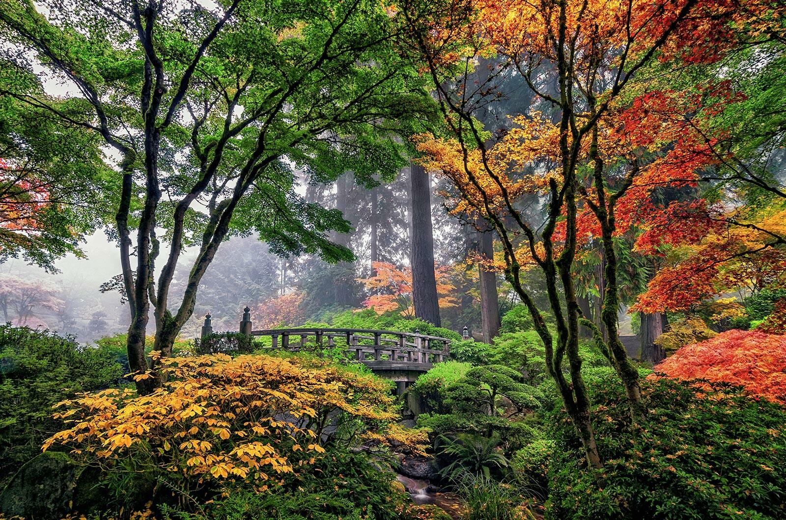 Fall Colors at Moon Bridge - Roman Johnston