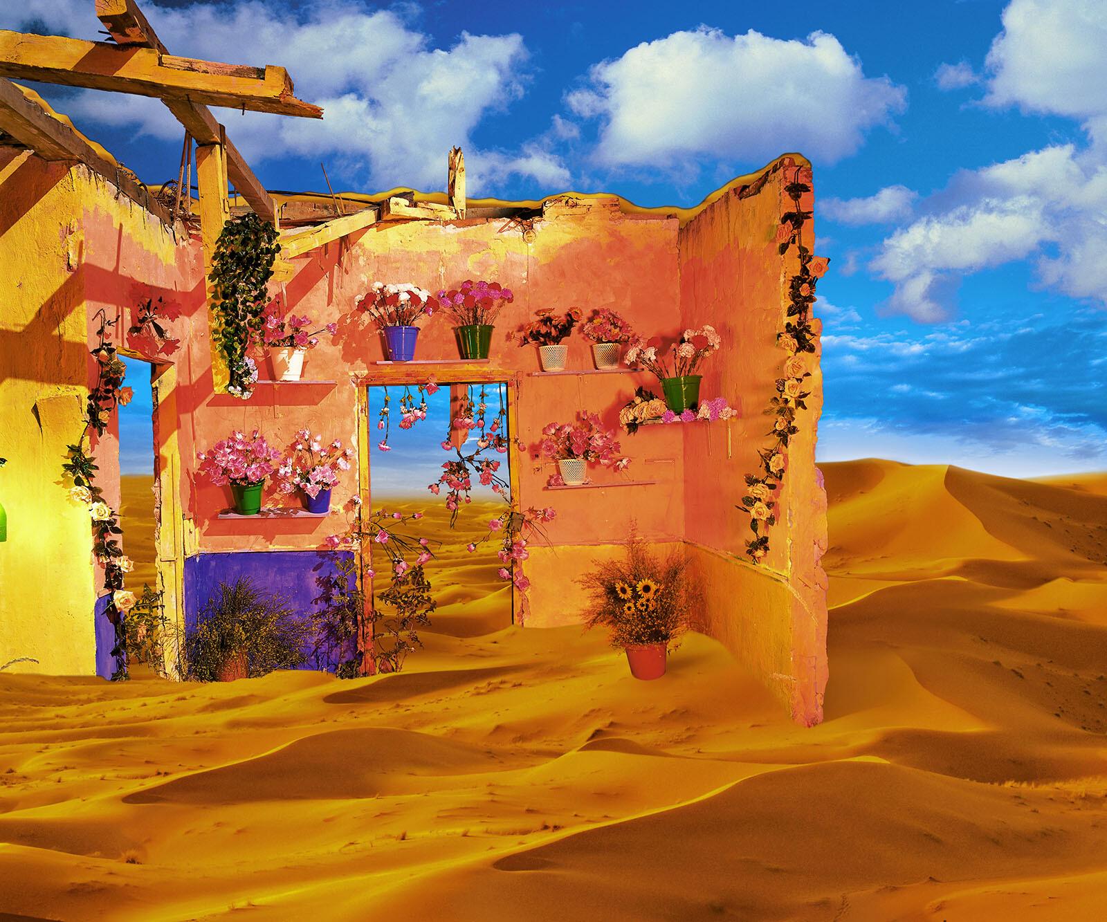Desierto con flores - Rosa Muñoz
