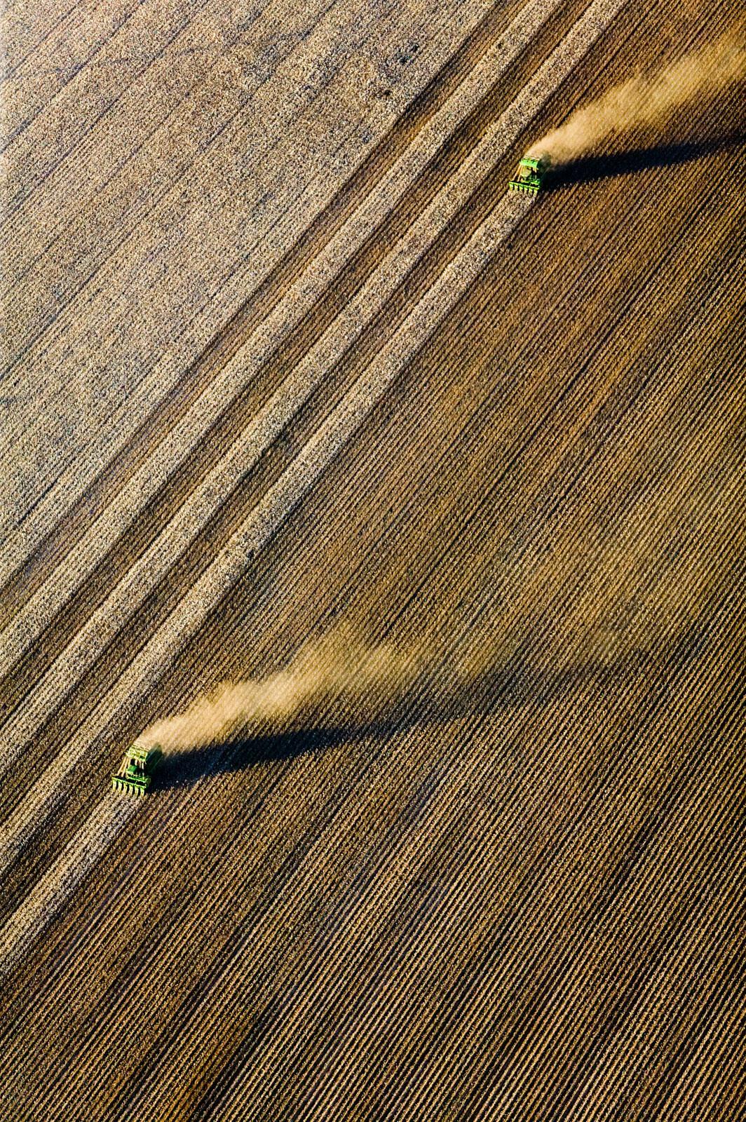 Cotton Harvesting, Buckeye, Arizona - Alex Maclean