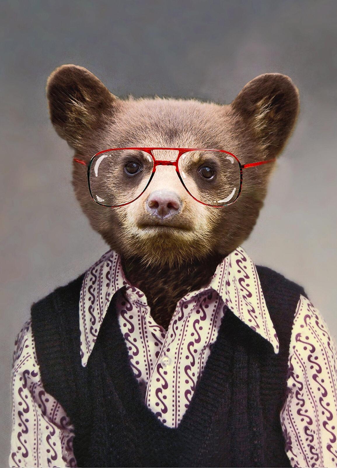 Benji the Bear - Angela Rossi
