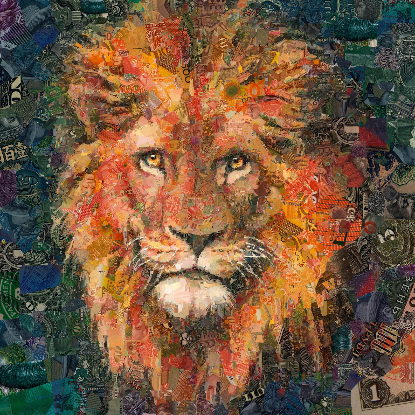 Lion - Charis Tsevis