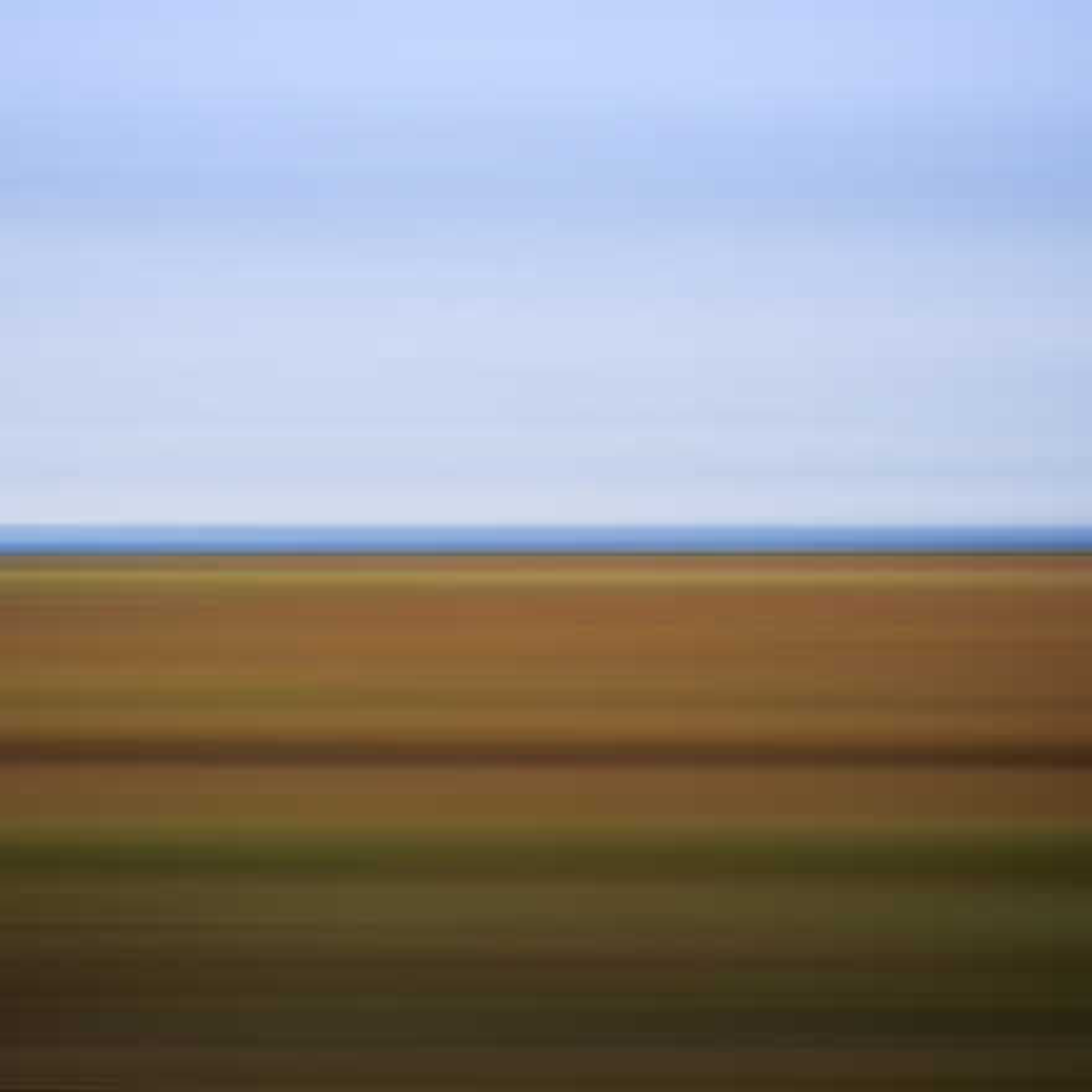 Spring Field, Sanford, Canada - David Burdeny
