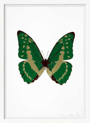 The Souls III - Emerald Green Cool Gold Burgundy von Damien Hirst