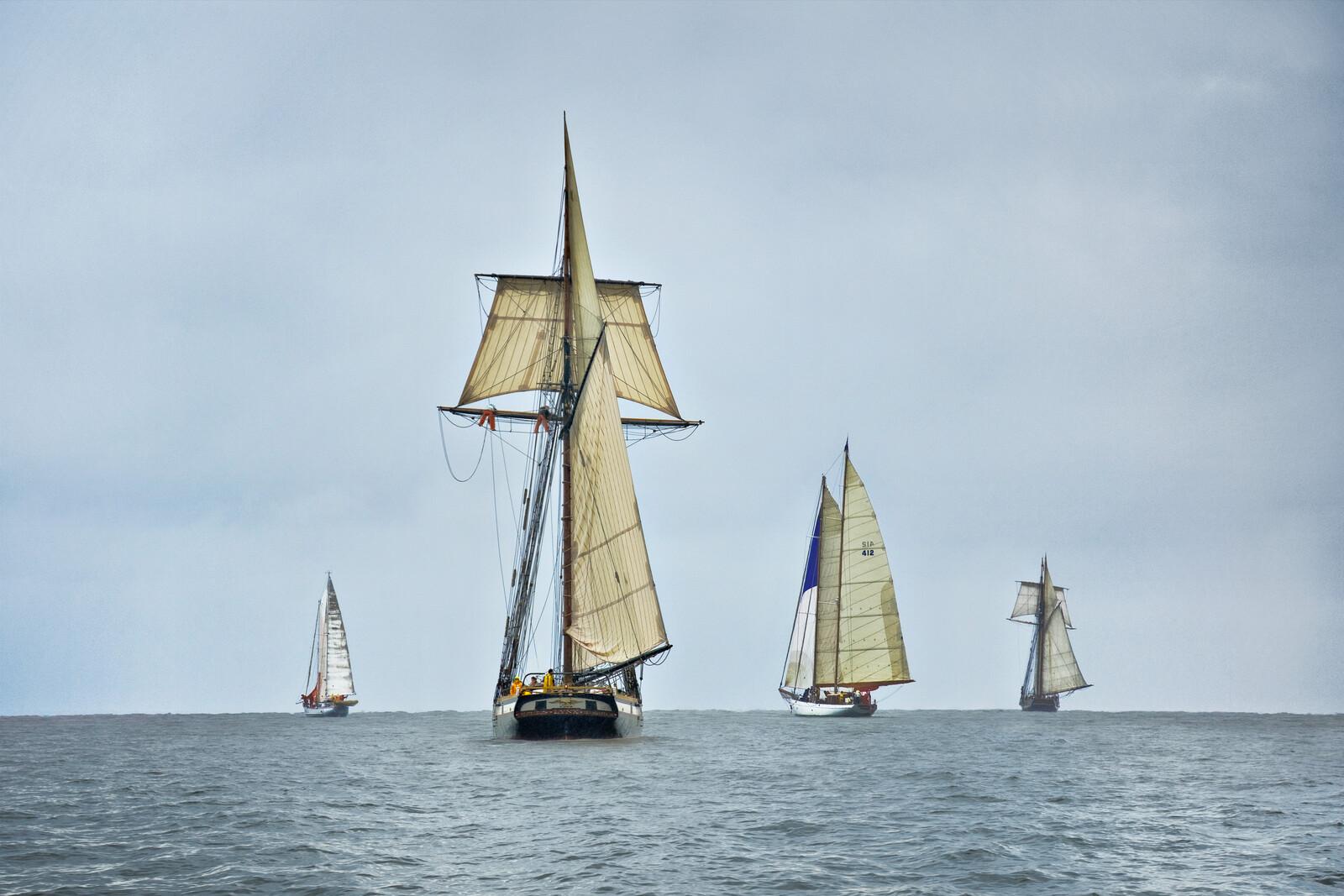 Schooners Racing on the Chesapeake Bay - Greg Pease