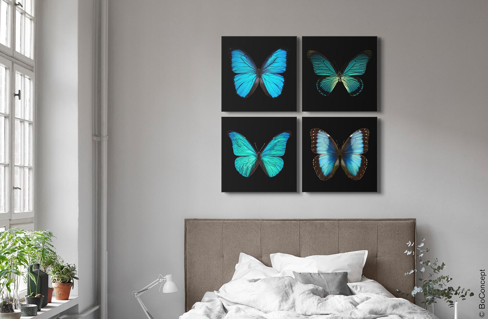 Butterfly Grid blue - Heiko Hellwig