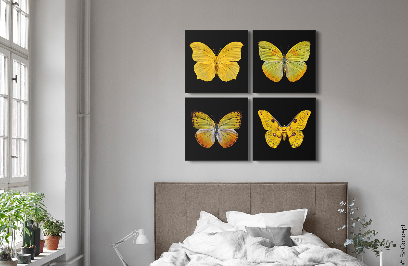 Butterfly Grid yellow - Heiko Hellwig