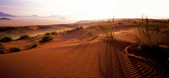 Dunes at Naukluft Park, Namibia