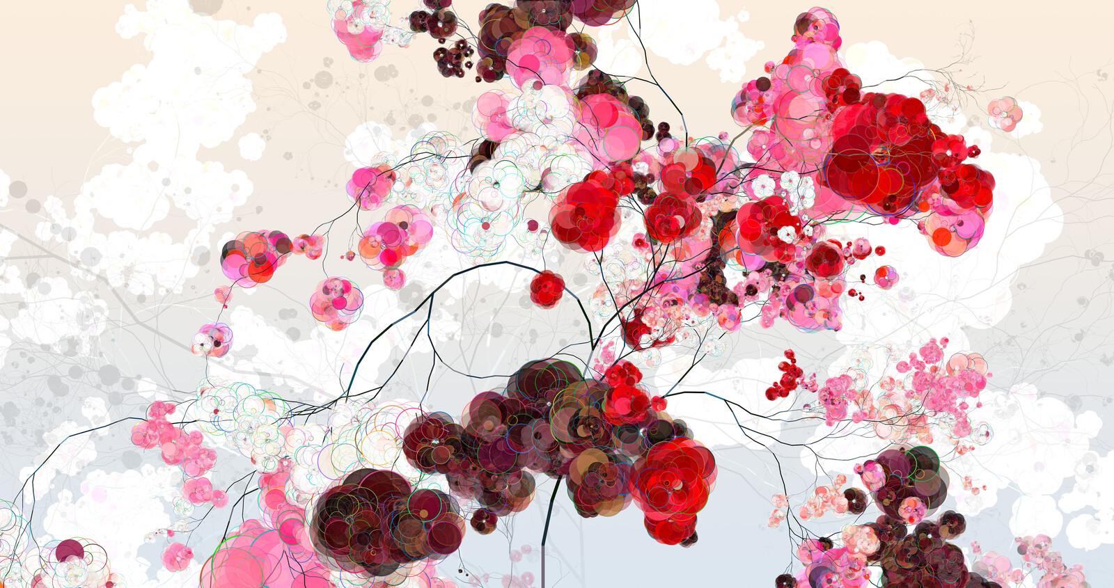 Rose Cherry II - Holger Lippmann