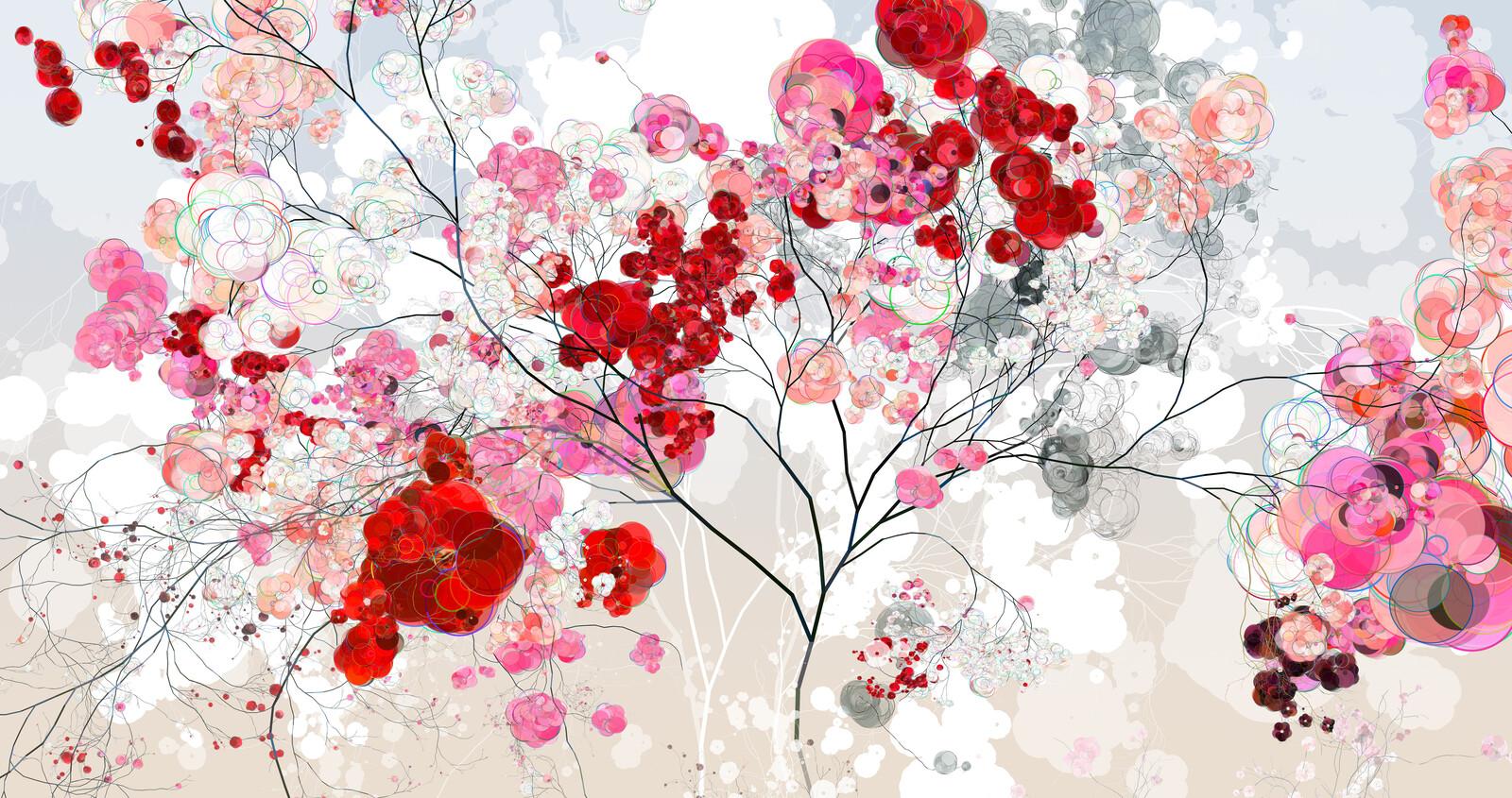 Rose Cherry IV - Holger Lippmann