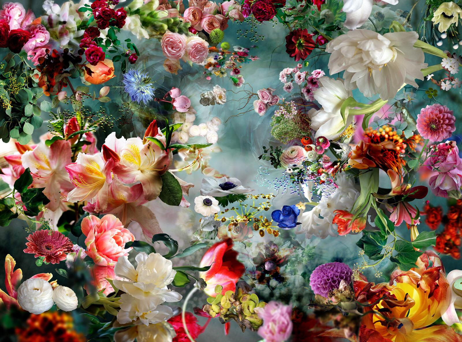 Dream River 06 - Isabelle Menin