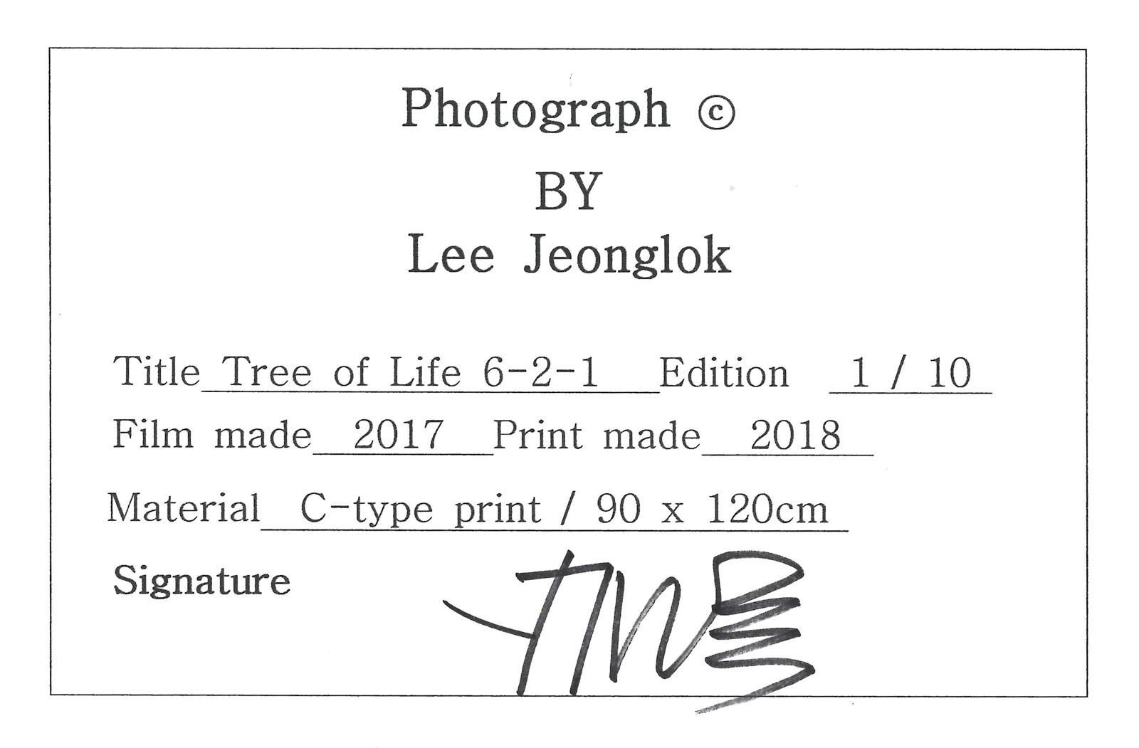Tree of Life 6-2-1 - Lee Jeonglok