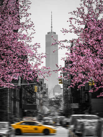 New York in Spring - Johannes Weinsheimer
