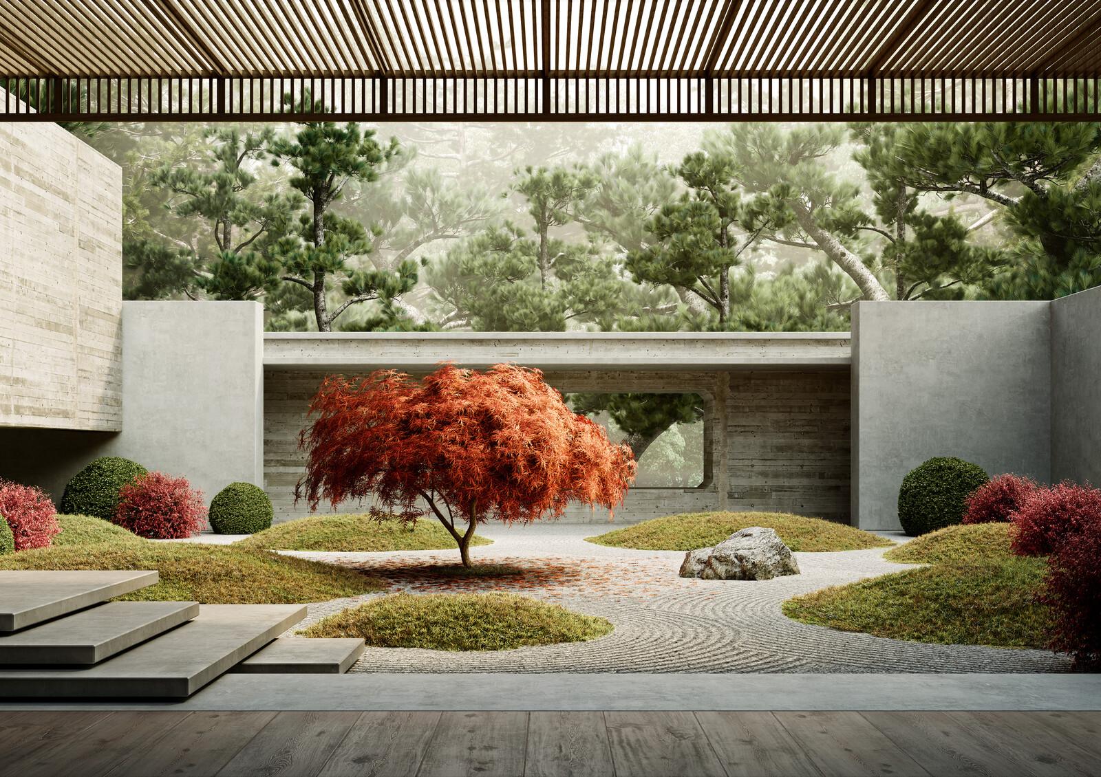 Red Maple Tree - Massimo Colonna