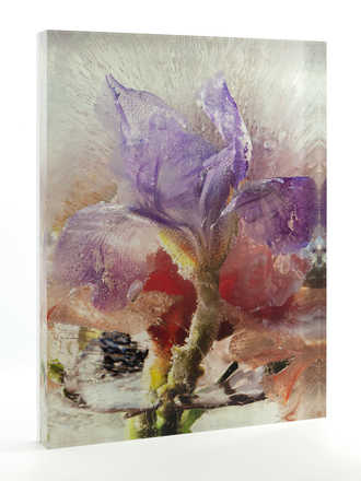 Cosmic Iris - Mary Kocol