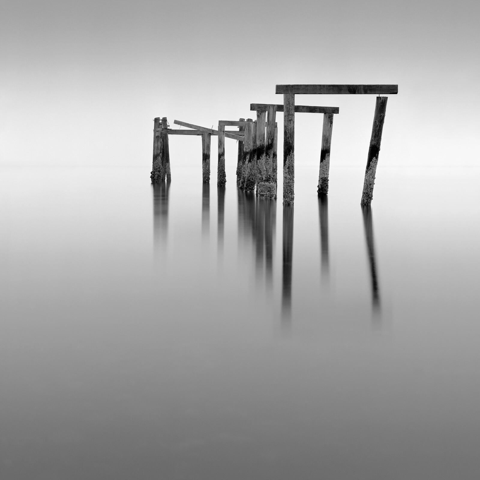 Floating - Michael Levin