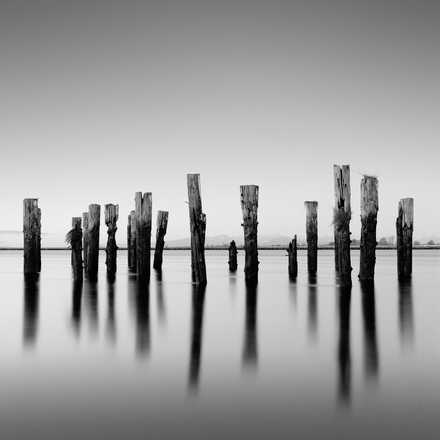 Posts And Shadows - Michael Levin