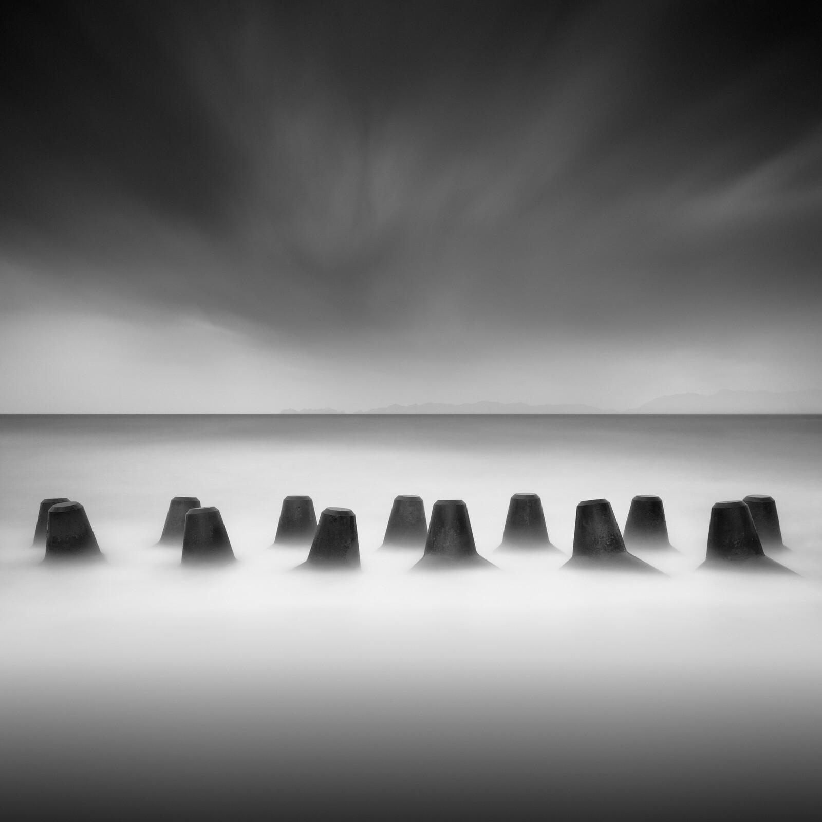 Sentinels - Michael Levin