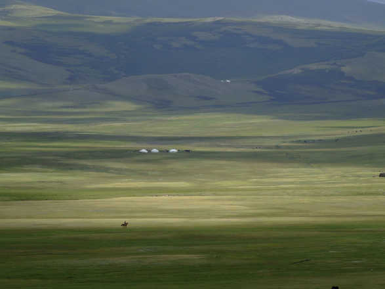 Liberté en Altaï - Olivier Föllmi