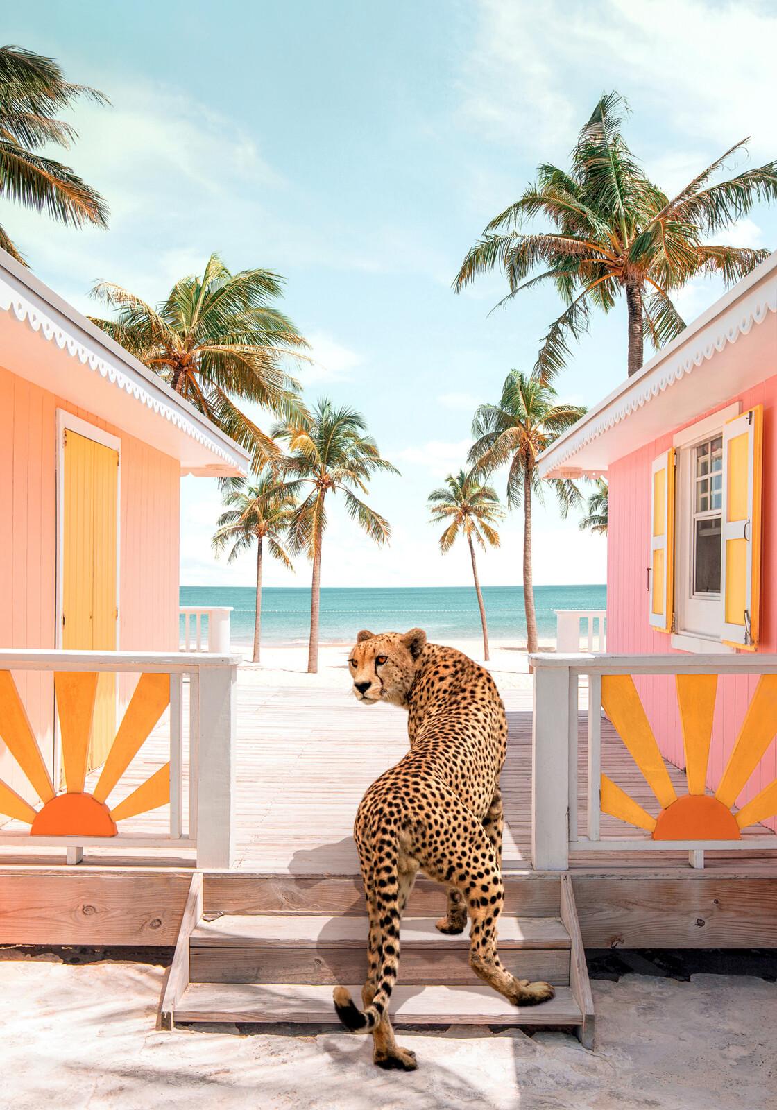 Sunny Beach - Paul Fuentes
