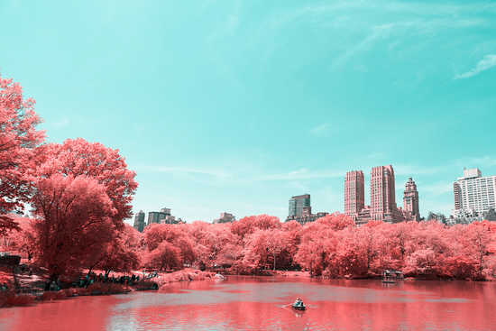 Infrared NYC IV