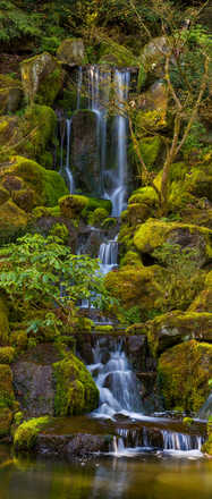 Heavenly Falls - Roman Johnston