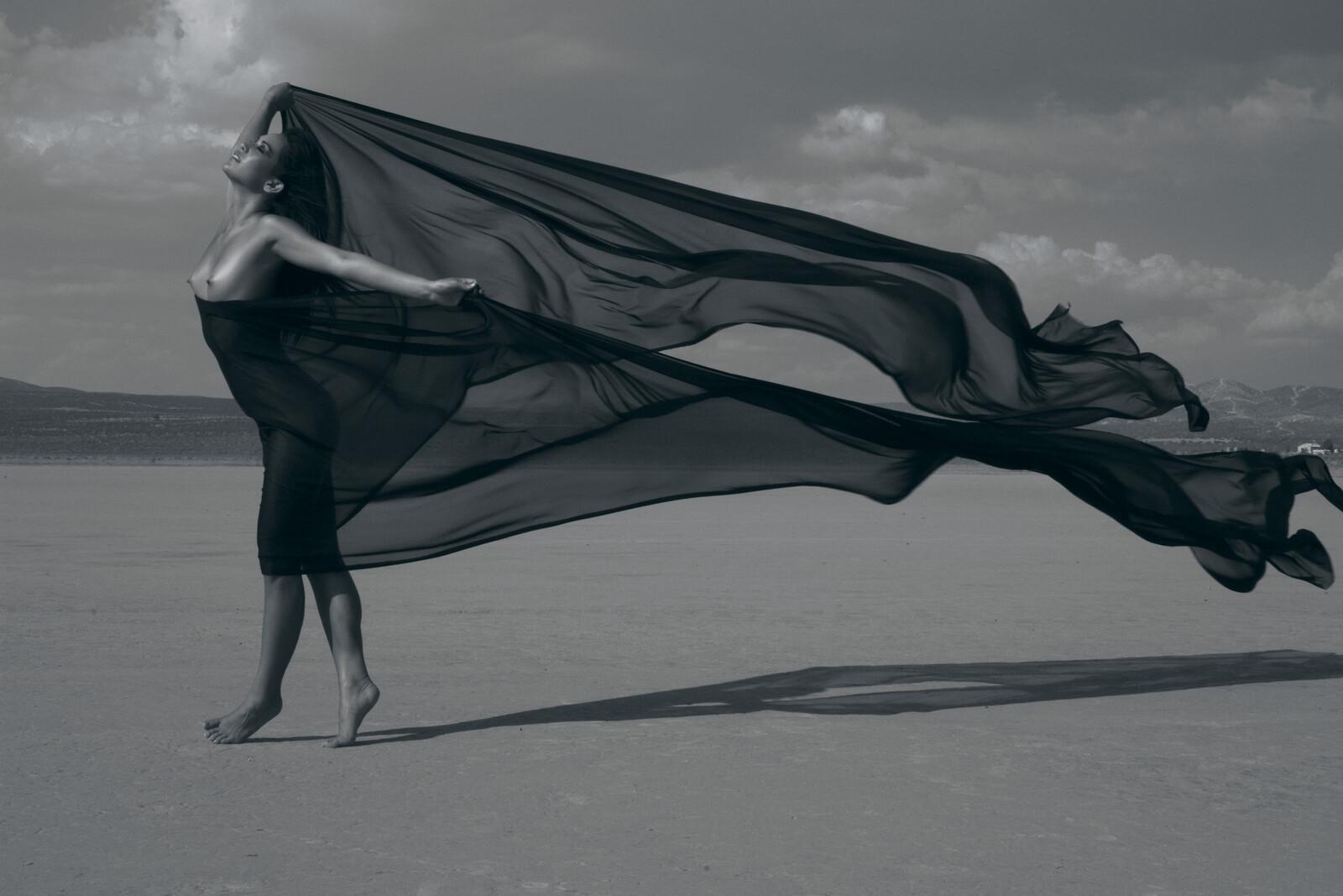 The Scarf - Sylvie Blum