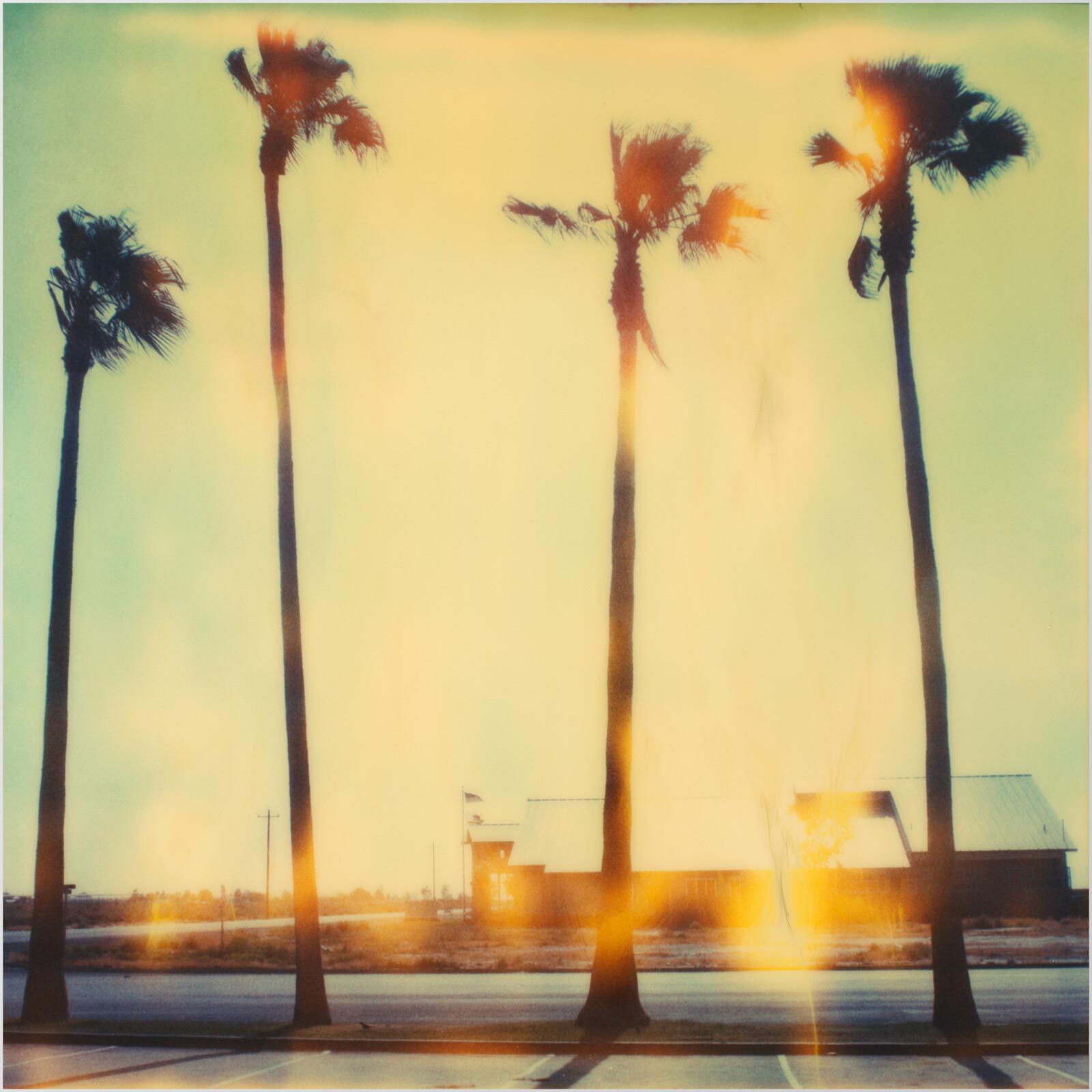 Palm Tree Restaurant - Stefanie Schneider