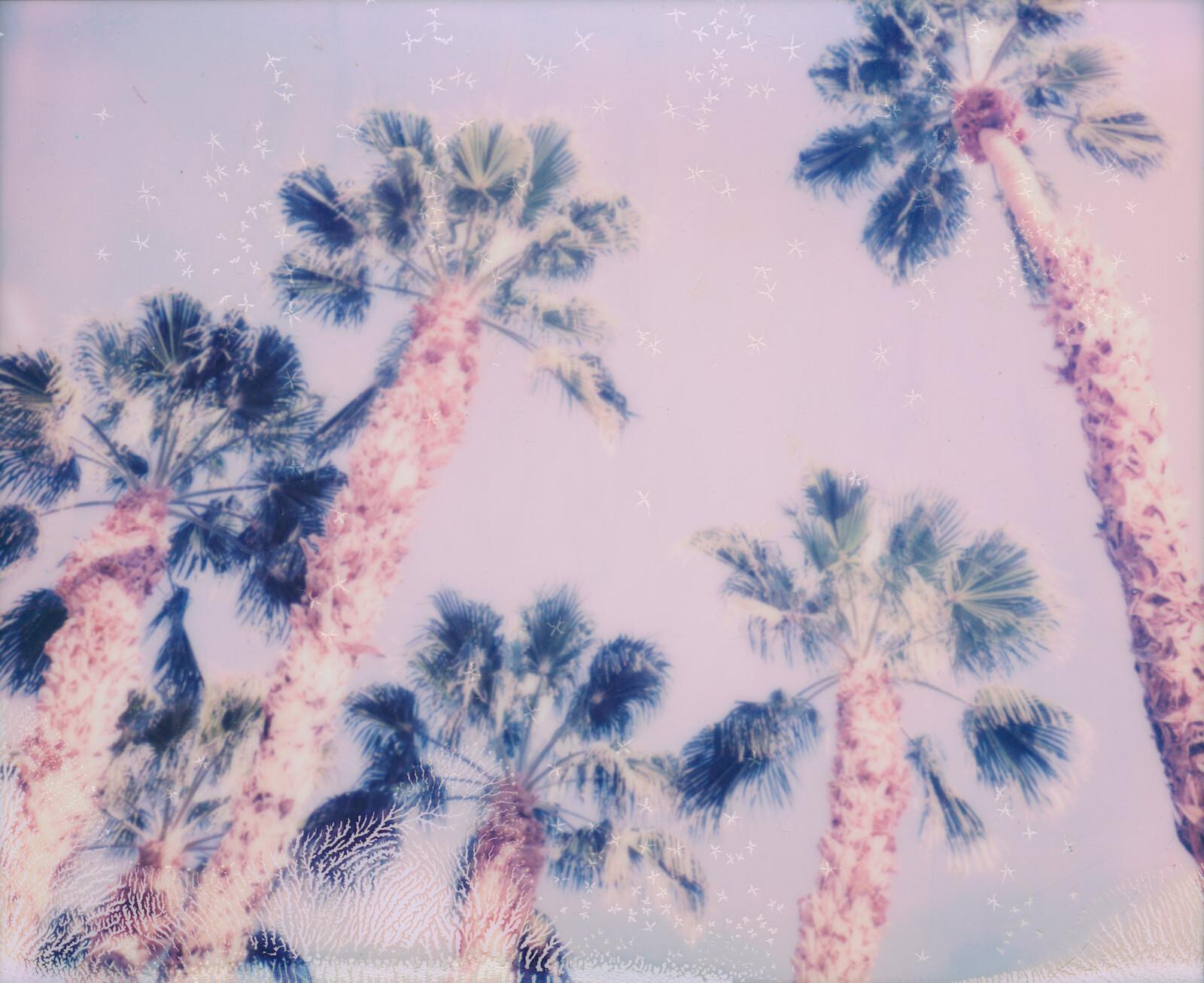 Snow Flakes - Stefanie Schneider