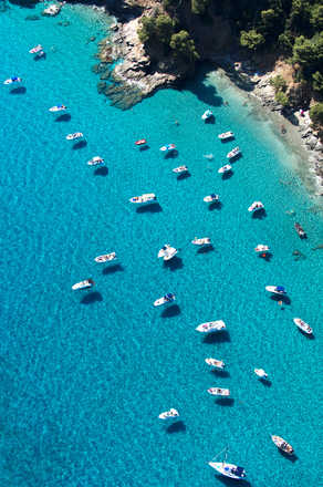 Boats in Cove - Tommy Clarke