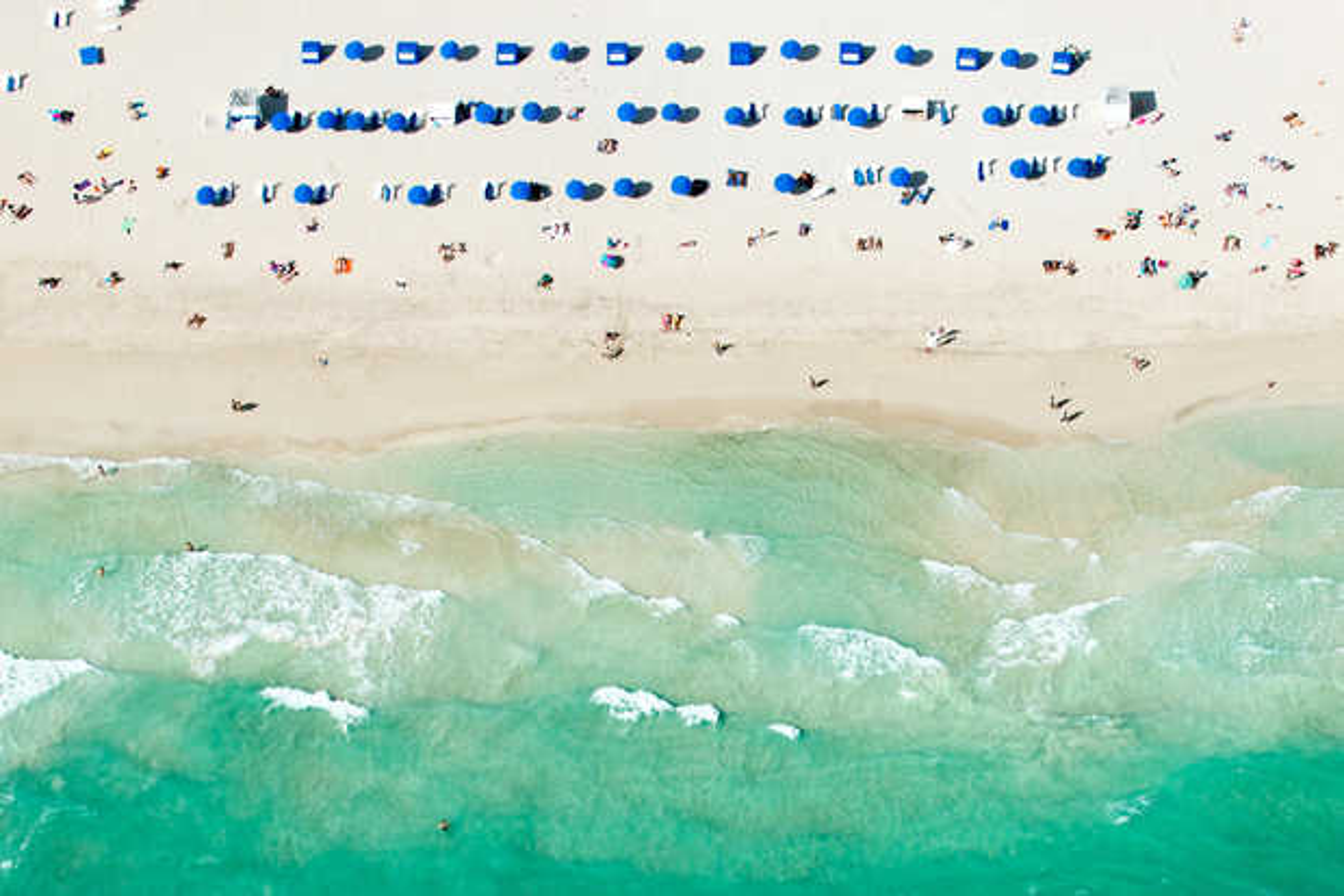 Blue Umbrellas Miami - Tommy Clarke