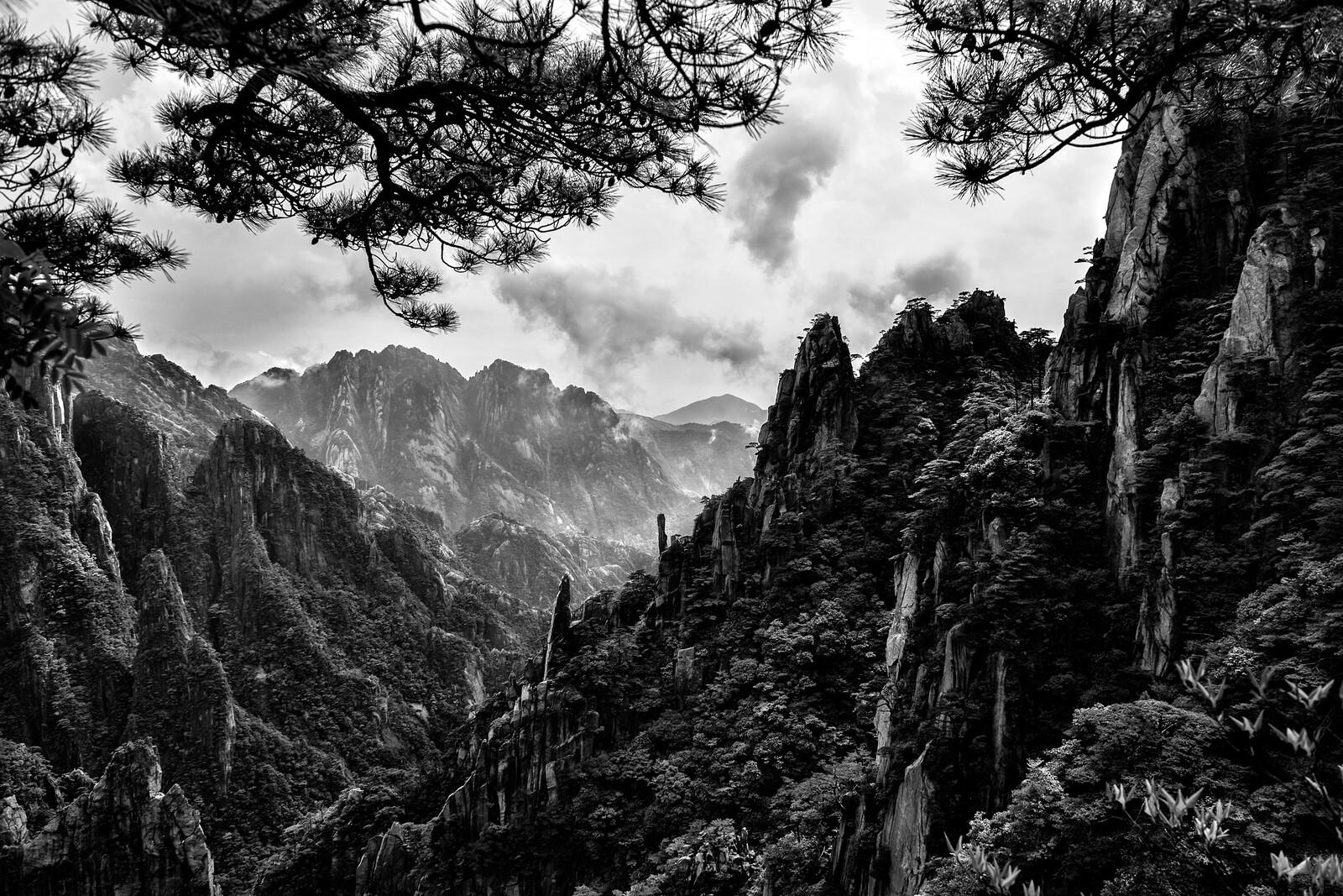 The Planet of Huangshan - Tatiana Gorilovsky