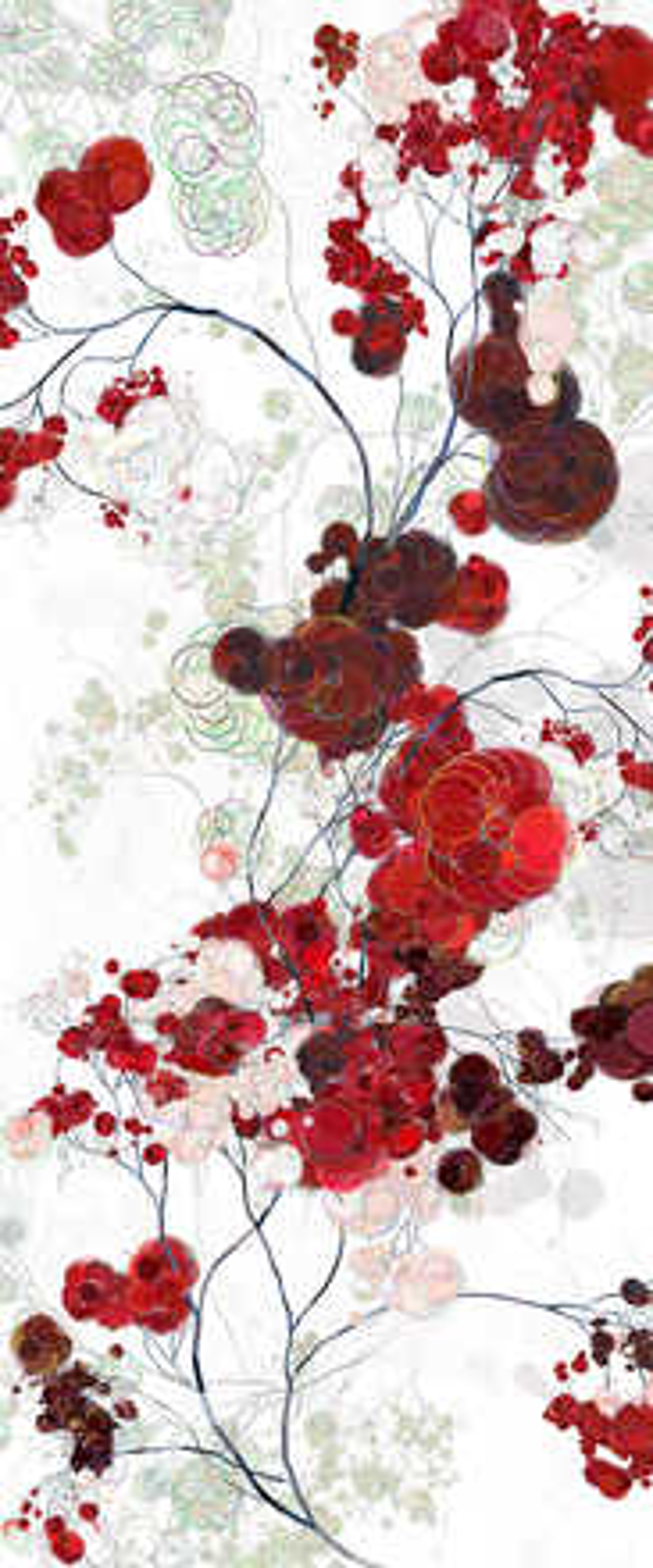 Run into Roses I - Holger Lippmann