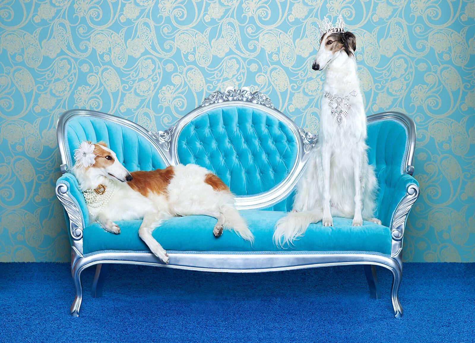 Luna & Bonny - Catherine Ledner