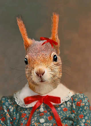 Stephanie the Squirrel - Angela Rossi
