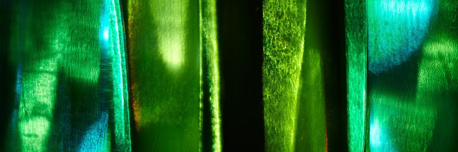 Smaragd - Beatrice Hug