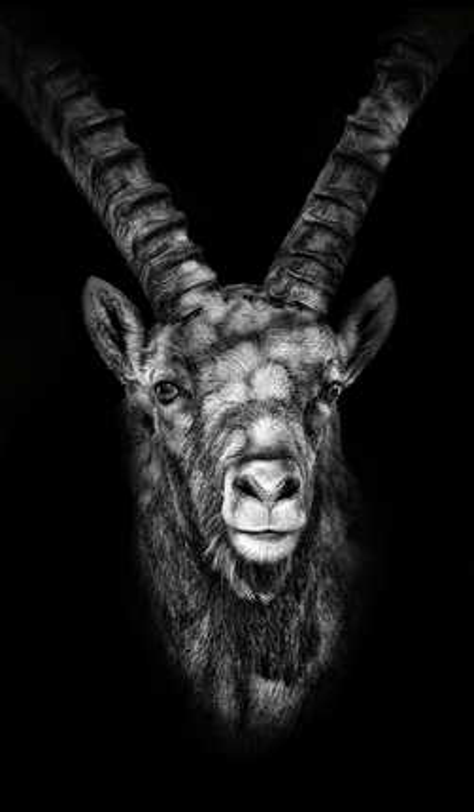 Marmor - Claudio Gotsch