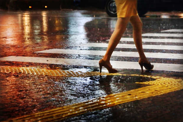Legs on zebra - Christophe Jacrot
