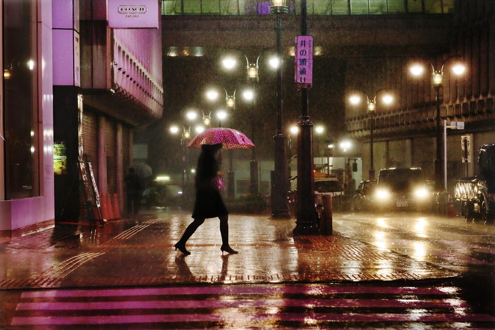 Purple in the rain - Christophe Jacrot