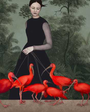 The Lady of the Ibis - Daria Petrilli