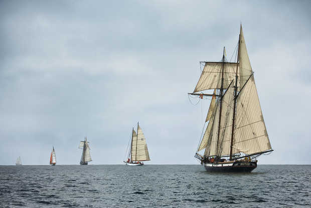 Schooners Racing on the Chesapeake Bay - Greg Pease