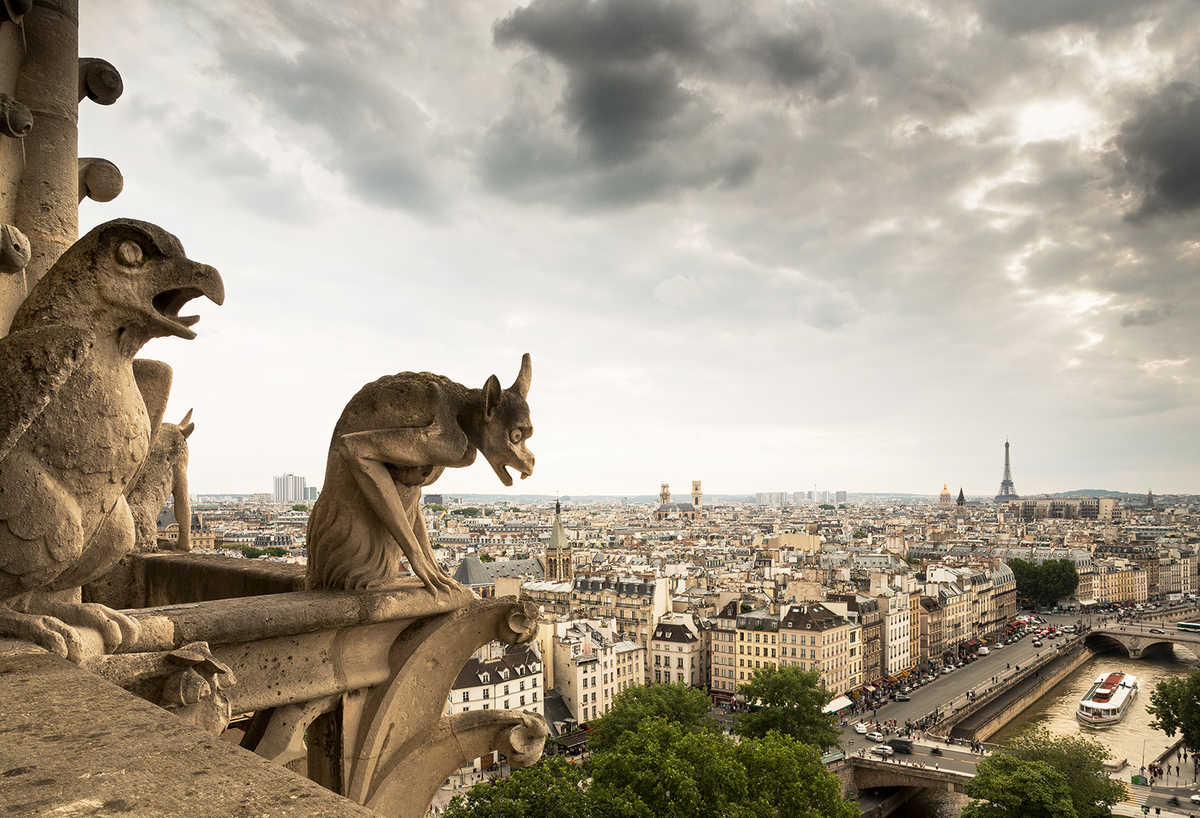 gargoyles notre dame de paris horst daniel zielske bilder fotografie foto kunst online. Black Bedroom Furniture Sets. Home Design Ideas