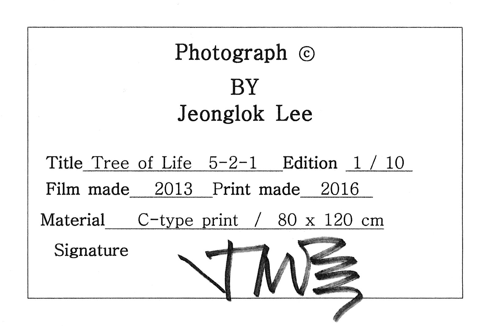 Tree of Life 5-2-1 - Lee Jeonglok