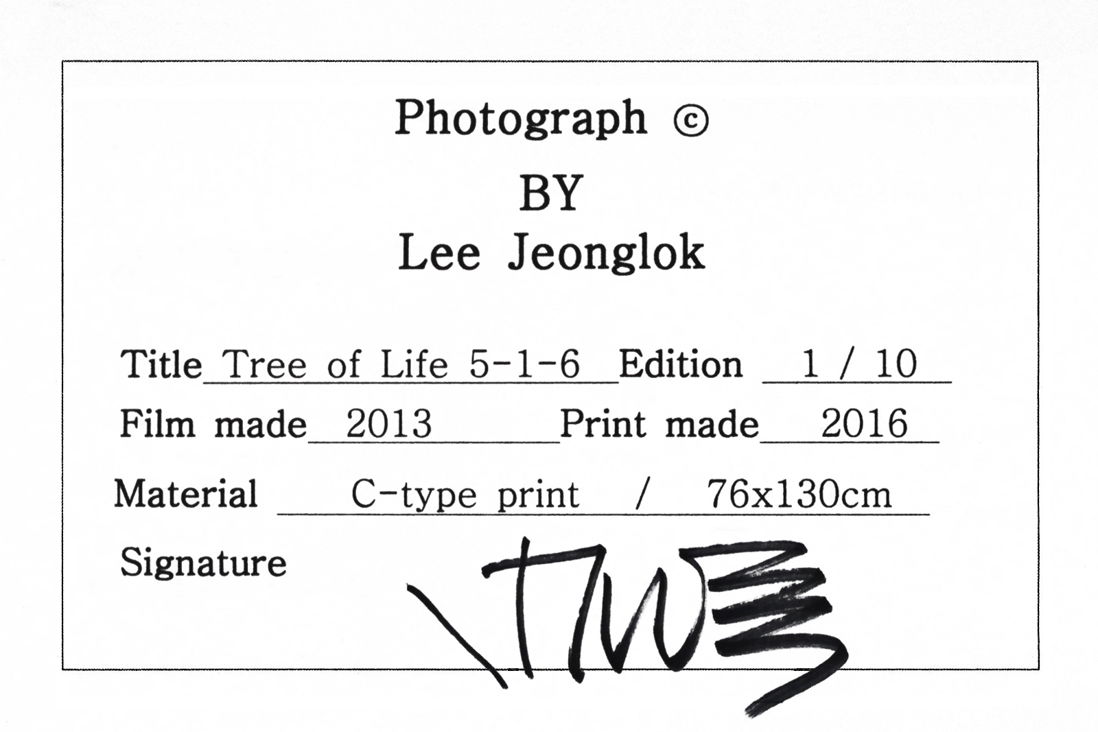 Tree of Life 5-1-6 - Lee Jeonglok