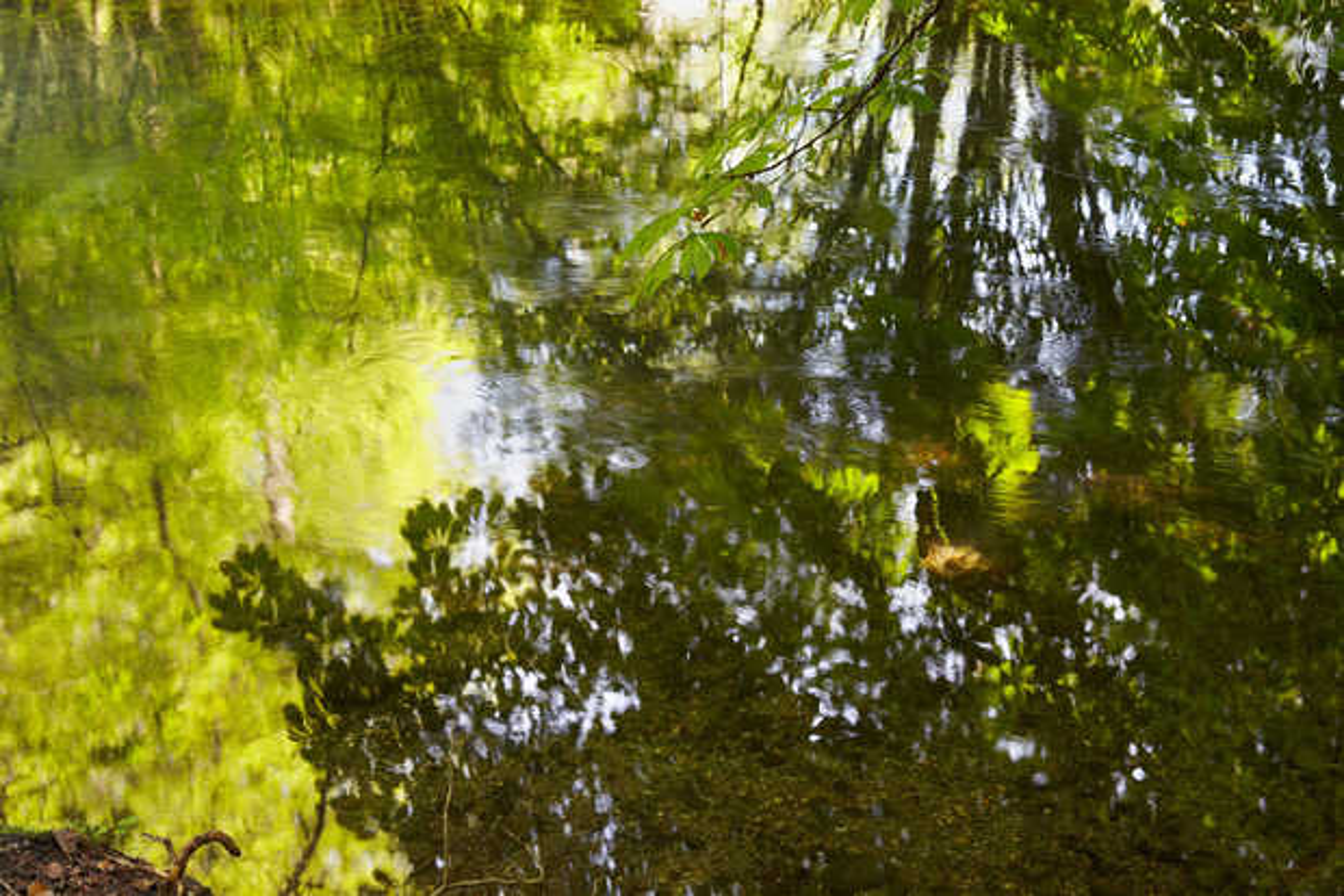 Enchanted Waters II - Juraj Lipscher