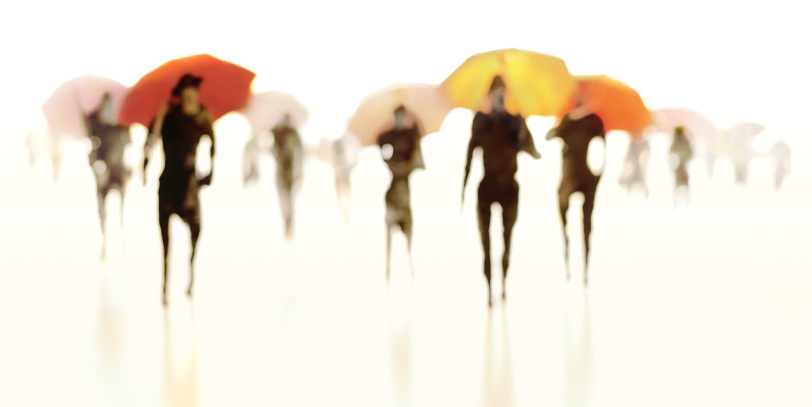 Umbrellas V - Joerg Maxzin